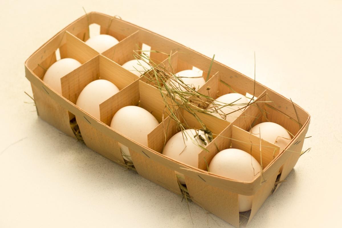 Design de embalagem de ovo
