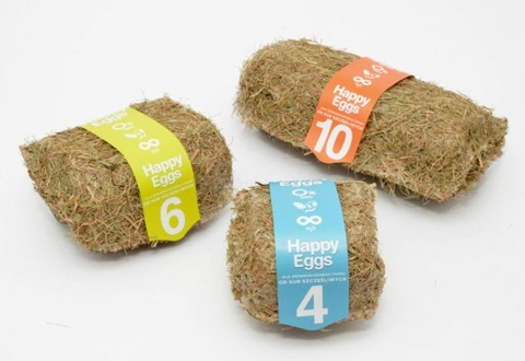 24-egg-packaging-design.preview